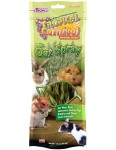Tropical Carnival® Natural Oat Spray Foraging Treats