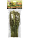 Tropical Carnival® Natural Japanese Millet Spray Foraging Treats
