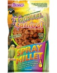 Tropical Carnival® Calcium Coated & Honey Dipped Spray Millet (Orange)