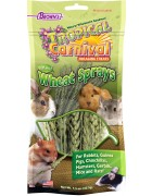 Tropical Carnival® Natural Wheat Sprays