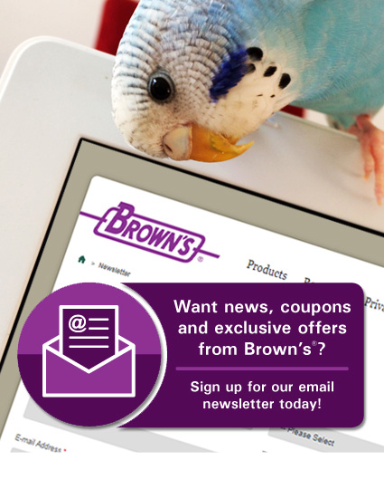 Brown's Email Newsletter Signup
