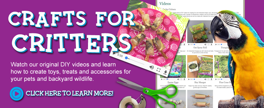 Crafts for Critters