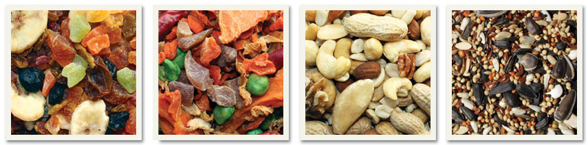 Pet Food-Wild Bird Food Ingredients