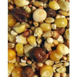 Thrifty Popcorn