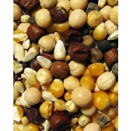 Conditioning Popcorn