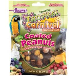 Tropical Carnival® Natural Mixed Coated Peanuts