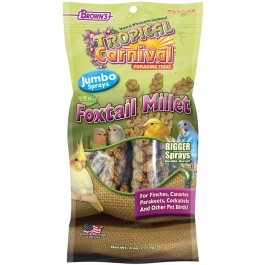 Tropical Carnival® Natural Foxtail Millet Jumbo Sprays