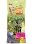 Tropical Carnival® Natural Oat Spray For Pet Birds