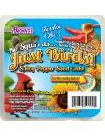 Garden Chic!®  No Squirrels... Just Birds! Seed Cake