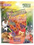 Tropical Carnival® Hoops Small Animal Treats