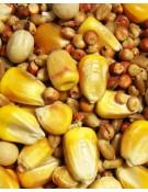 Park Small Corn