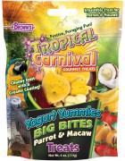 Tropical Carnival® Yogurt Yummies™ Big Bites Parrot & Macaw Treats