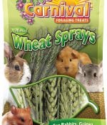 Tropical Carnival® Natural Wheat Sprays-0