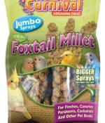 Tropical Carnival® Natural Foxtail Millet Jumbo Sprays-0