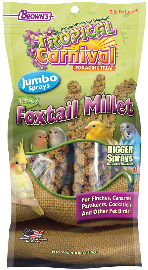 Tropical Carnival® Natural Foxtail Millet Jumbo Sprays-0