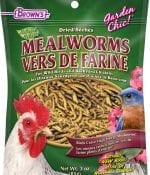 Garden Chic!® Mealworms-0