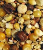 Thrifty Popcorn-0