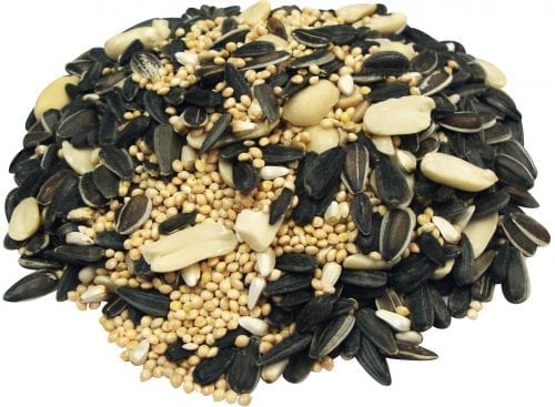 Bird Lover's Blend® Hi-Energy Plus™ with Peanuts-1824