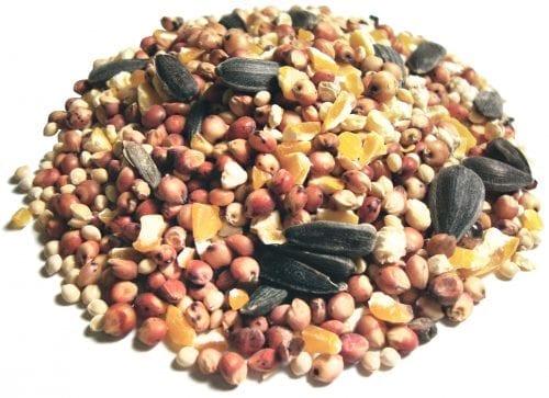 Value Blend Select™ Natural Wild Bird Food-2222