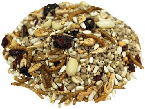 5 lb. Bird Lover's Blend® Nuts, Berries & Bugs!-2417